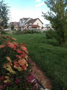 Pro-Rich lawn; Mary Zimmerman - Gunnison, Colorado