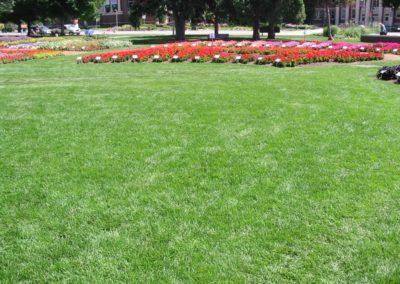 CSU-Trial-Garden-7-1024x768