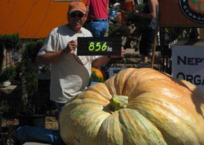 Jareds-Pumpkin-Weigh-off-011