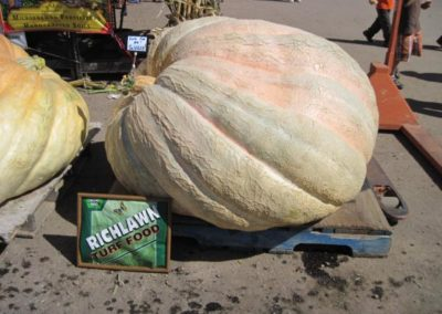 Jareds-Pumpkin-Weigh-off-016