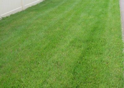 lawn-photos-3-010