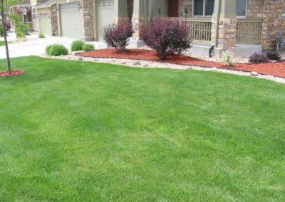 lawn-photos-3-036