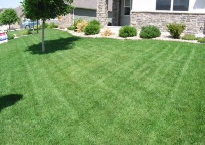 lawn-photos-3-060