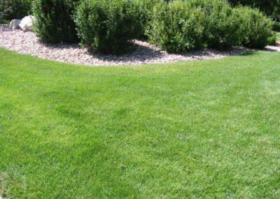 lawn-photos-3-061