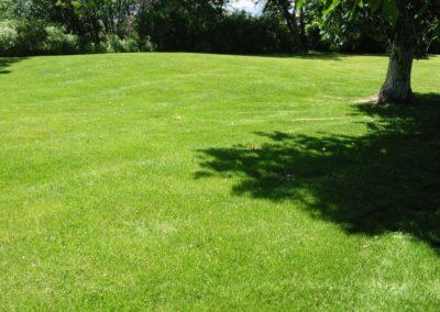 lawn-photos-3-063