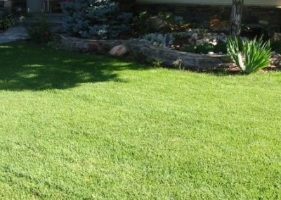 lawn-photos-6-006