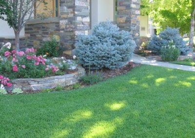 lawn-photos-6-0101