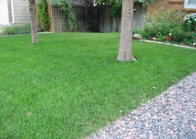 lawn-photos-7-004
