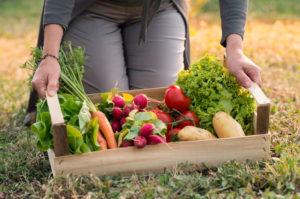 How Organic Fertilizer Can Produce An Abundant Crop