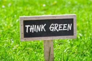 Use Chicken Manure For Green Grass