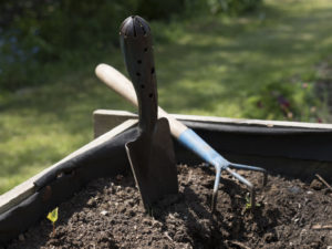 Organic Lawn Care With Compost Starts