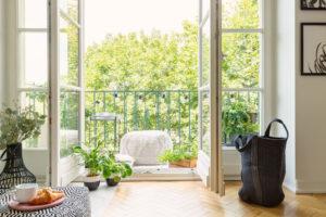 Fertilize Lawn Bring Plants Indoors
