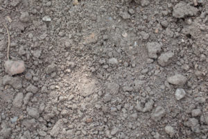 Clay Buster Products for Rich lawn