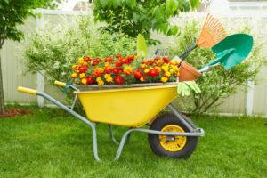 best landscaping ideas fertilizer to use